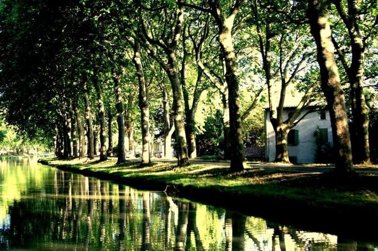 Canal du Midi (Carcasona) FRANCIA