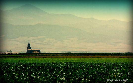 Paisaje de la Rioja Alta (La Rioja) ESPAÑA